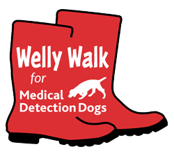 Welly Walk